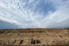Kralj otrova curi iz mostarske deponije